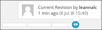 Revisions2